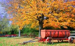 höstlantgårdplats royaltyfri fotografi