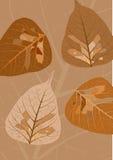höstleaves stock illustrationer