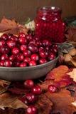 Höstleaves och cranberries Arkivfoto