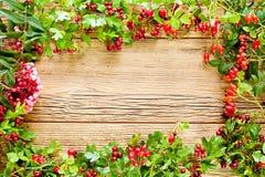 höstlig bakgrund Fotografering för Bildbyråer