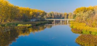 Höstlig eftermiddag på en Psel flod i Ukraina Royaltyfri Bild