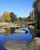 höstlig flod arkivfoto