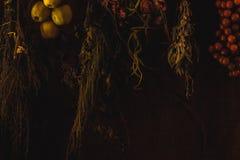höstlig frukt och aromatiska örter från den italienska bygden royaltyfria foton