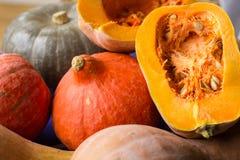 Höstlig mognad guling, apelsin, gröna pumkins mycket och snitt arkivbild