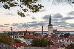 Höstlig morgonsikt av den gamla staden Tallinn, Estland Royaltyfri Fotografi