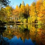 Höstlig natur, landskap Royaltyfria Bilder