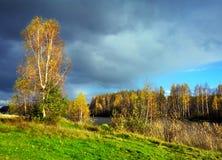 Höstlig natur, landskap Royaltyfri Fotografi