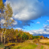 Höstlig natur, landskap Arkivfoton