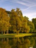 höstlig park Fotografering för Bildbyråer