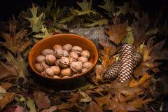 Höstlig stillebensammansättning: lerakruka och valnötter Arkivfoto