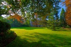 höstlig tidig trädgårds- luxembourg morgon Fotografering för Bildbyråer