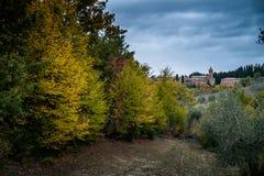 Höstlig trekking i landskapet av Siena, från Buonconvento till Fotografering för Bildbyråer