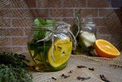 Höstlig växt- drink Arkivbild