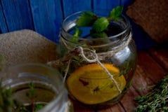 Höstlig växt- drink Royaltyfria Foton