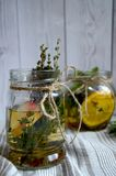 Höstlig växt- drink Arkivbilder