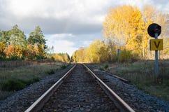 Höstliga järnvägspår Arkivbilder