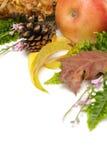 höstliga leaves för arragement arkivbild