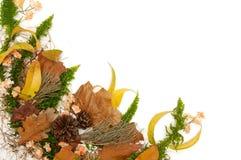 höstliga leaves för arragement royaltyfri bild