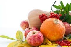 Höstliga pumpor, äpplen och ashberry med nedgångsidor Arkivbild