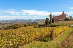 Höstliga vingårdar och gammal slott i Italien Royaltyfria Bilder