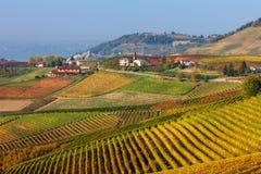 Höstliga vingårdar på kullarna av Langhe Royaltyfria Bilder