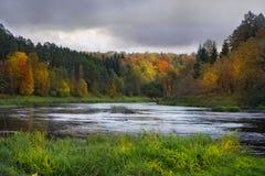 Höstliggande med en flod royaltyfria bilder
