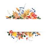 Höstligt blom- baner för vattenfärg Royaltyfri Foto
