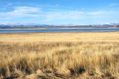 Höstligt höglands- landskap royaltyfri foto