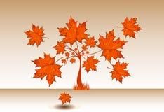 Höstligt lönnträd med stora sidor Fotografering för Bildbyråer