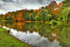 Höstligt landskap av damm i parken Arkivbild