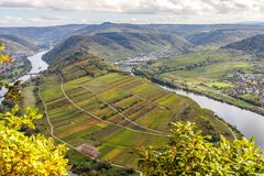 Höstligt Moselle landskap på den Bremm Calmont regionTyskland Arkivbild