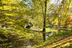 Höstligt skoglandskap med floden Royaltyfri Foto