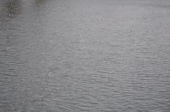 Höstligt vatten på en regnig dag Arkivbilder