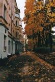 höstliten stad Arkivbilder
