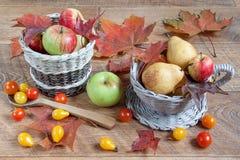 höstlivstid fortfarande Frukter, grönsaker och lönnblad Royaltyfria Foton