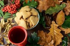 höstlivstid fortfarande Hjärtakaka svart tea isolerad rönnwhite för bakgrund filial olika leaves Royaltyfria Foton