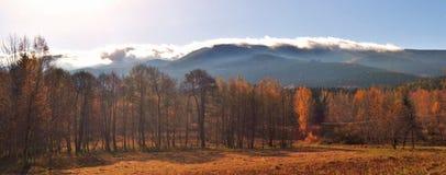 Höstlynne i de jätte- bergen royaltyfri foto