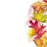 Höstmallbakgrund Säsongsbetonade illustrationer Rengöringsdukbanermall för flygillustration för näbb dekorativ bild dess paper st Royaltyfria Foton