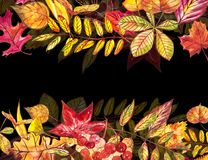 Höstmallbakgrund Säsongsbetonade illustrationer Rengöringsdukbanermall för flygillustration för näbb dekorativ bild dess paper st Royaltyfri Bild