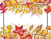 Höstmallbakgrund Säsongsbetonade illustrationer Rengöringsdukbanermall för flygillustration för näbb dekorativ bild dess paper st Arkivfoton