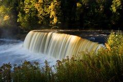 höstmichigan vattenfall arkivbilder