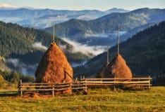 Höstmorgon i de Carpathian bergen arkivbild