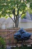 Höstmorgon i monteringsutsikten IL, USA Bostads- område Fotografering för Bildbyråer