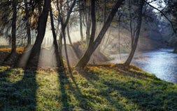 Höstmorgon nära den Vilnele floden royaltyfria foton