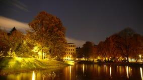 höstnattpark Arkivfoton