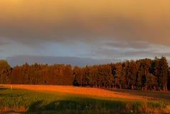 Höstnatur i Tyskland Arkivbilder