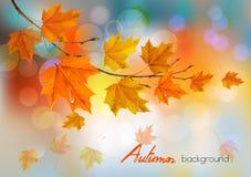 Höstnaturbakgrund med färgrika sidor och droppar royaltyfri illustrationer