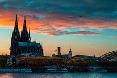Höstnedgång i Cologne royaltyfri bild