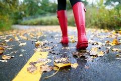 Höstnedgång med färgrika sidor och regnkängor arkivfoton