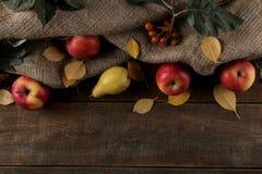 Höstordning med fruktäpplen och päron och gula höstsidor på en brun trätabell med ett ställe för inskrift royaltyfri foto